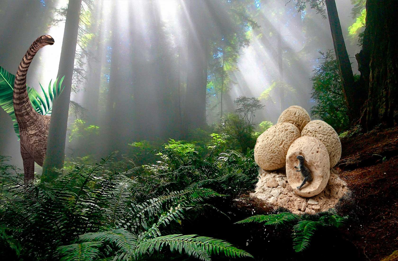 How Dig it up dinosaur eggs promote motor skills